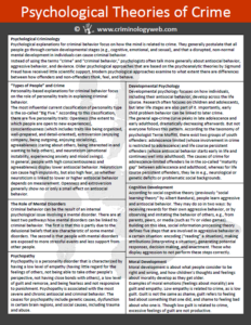 Criminal Psychology And Criminology Theories Summary Of Crime